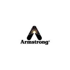 美國阿姆斯壯Armstrong閥門