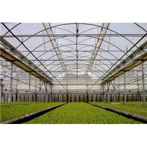 消雾膜价格 玉兰花塑料制品供应销量好的流滴膜