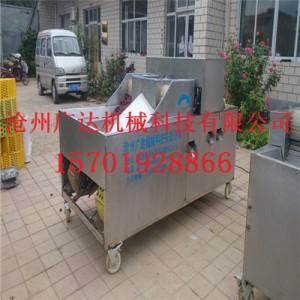 红枣去核机型号——沧州质量好的红枣去核机_厂家直销