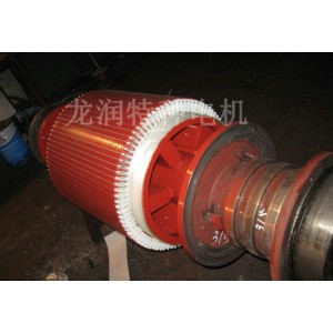 要找专业的高压转子维修当选龙润特种电机 青岛高压转子维修