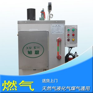 50kg燃气蒸汽锅炉小型工业天然气液化气全自动蒸气发生器