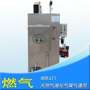 旭恩自然循环100KG燃气蒸汽发生器设备