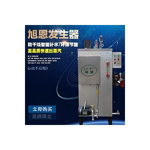 旭恩微型30KG天然气蒸汽发生器超低价