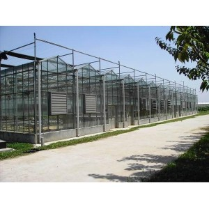 结实耐用的温室大棚推荐_山东智能温室工程