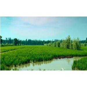 智慧农机管理系统兼顾了农机改进和农业信息的采集