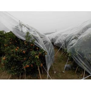 柑橘防寒膜-黔南布依族苗族自治州创新型的砂糖橘防寒膜提供商