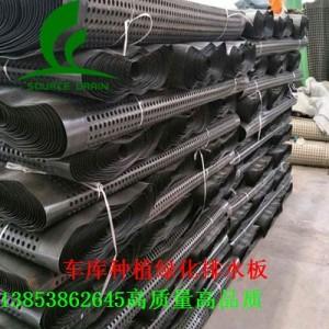 杭州20高车库顶滤水板3公分种植屋面蓄排水板