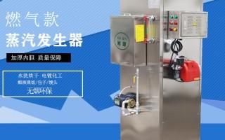 降低燃氣蒸汽發生器的運行成本的措施